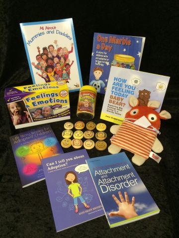 Adoption & Fostering Toolkit Best Buy Pack